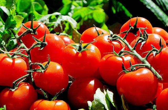 tomaten-vervangen