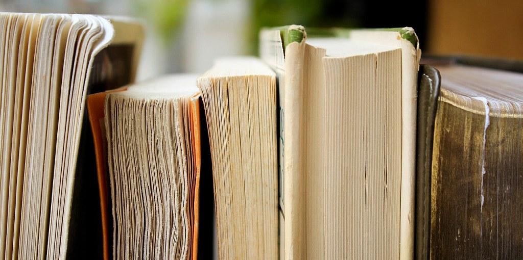 papiervisje bestrijden boekenkast